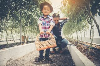 Harvest & Cook in an Organic Farm plus more NEW Activities on the ENTERTAINER Hong Kong 2019